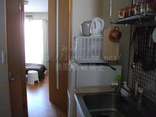 玄関から生活空間を撮影。左側の扉がトイレ。
