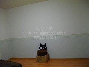 ベンチ風の段ボール箱しかない、相変わらずさびしい壁。