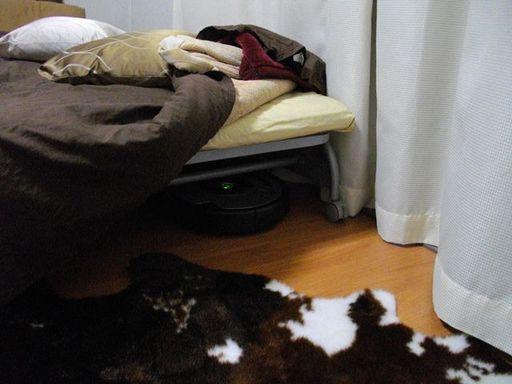 ベッドの足元側でひっそりと時(っていうか電池)が満ちるのを待つルンバ。