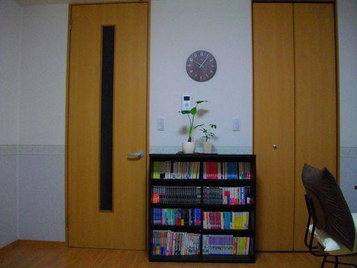 少し低めの位置に時計が掛かっていて、その下に本棚がある。本棚の上には最近買ったクワズイモとカポックが載っている。