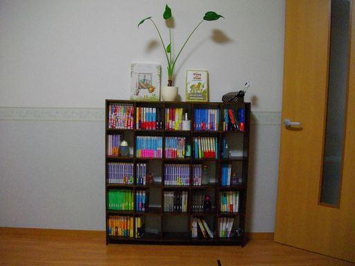 減らす前の本棚1