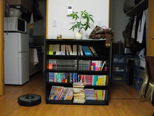 本を減らす前の本棚2